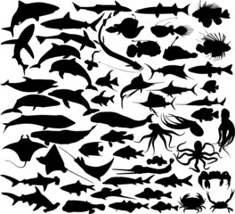 Set of silhouettes of fishes