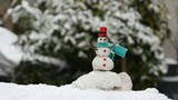 snowman miniature in winter time