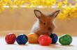Kaninchen mit bunten Eiern