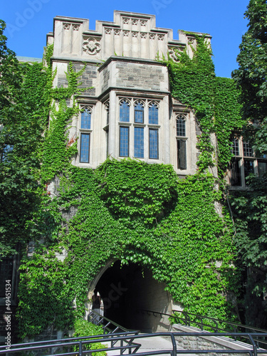 vine covered college building