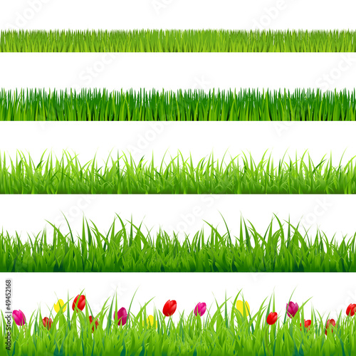 Big Green Grass And Flowers Set