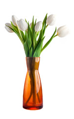 Bouquet of white tulips with green leaves isolated on white back