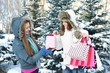 Beautiful happy girls with shopping bags in a winter park