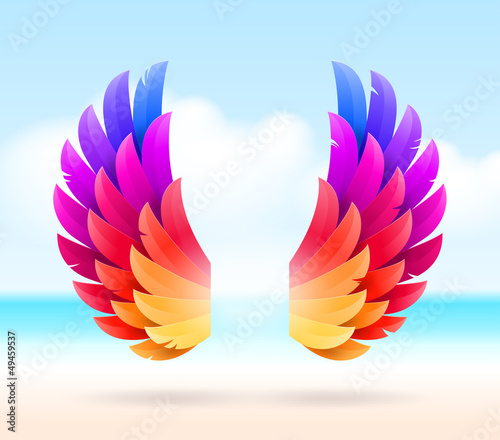 Colorful wings on a tropical sea shore