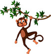 monkey cartoon on tree