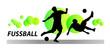 Fussball - Soccer - 113