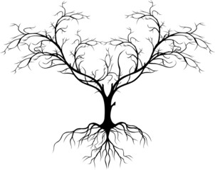 tree silhouette without leaf