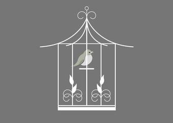 Cage oiseau - fond gris