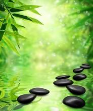 Bamboo zen, cailloux, le soleil et l'eau.