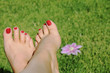 woman foot with red nails on grass background with flower