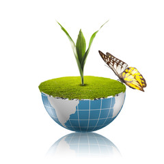 Butterfly on globe with grass growing