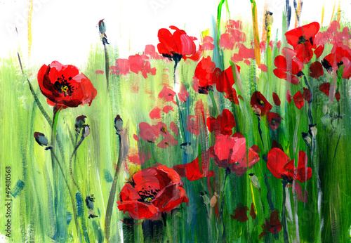 poppies © okalinichenko