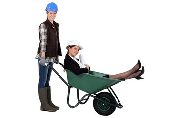Worker pushing boss in wheelbarrow