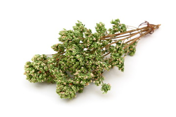 Origano secco - Dried oregano
