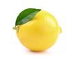 One lemon with leaf