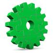 Green Puzzle Gear Wheel