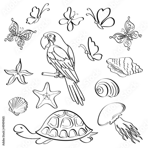 Exotic fauna, outline, set