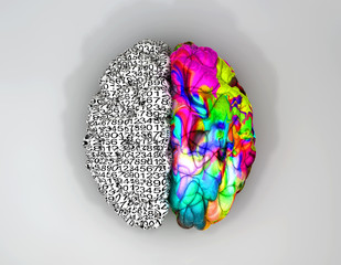 Left And Right Brain Concept Top