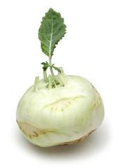 white kohlrabi