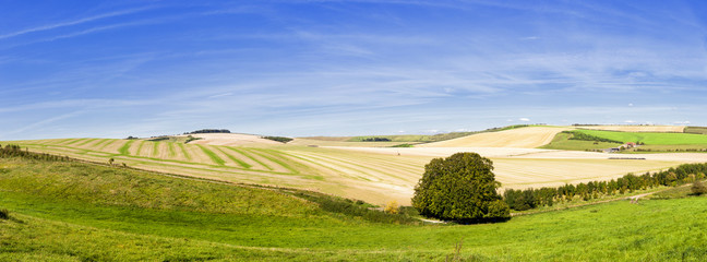 Panoramic Rolling Farmland