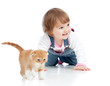 funny little girl playing with Scottish kitten