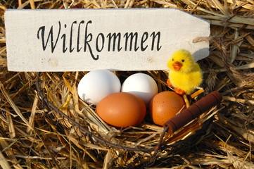 Eierkorb und Holzschild