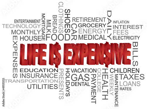 Life is Expensive Word Cloud