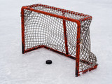 Hockey puck in kids net