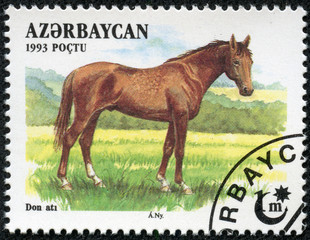 stamp  shows a brown, Akhal-Teke Akhaltekin breed horse