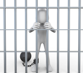 3D Prisoner Jailed in Cell