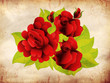 Grunge red roses with leaves