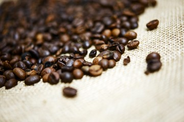 Coffee Beans Theme