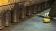 metal press at the plant