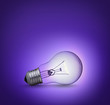 light bulb on purple background on the ground