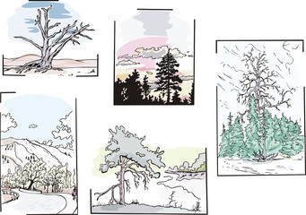 landscapes with trees