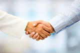 Business people handshaking