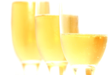 three glasses of champagne on a white background