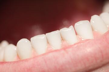 men's teeth. macro