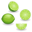 Limes, Fresh Fruit: whole, half, slice, wedge, white background