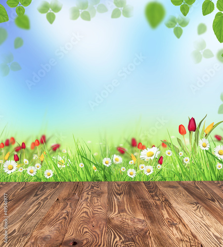Spring meadow with wooden planks