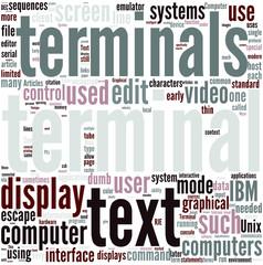 Computer terminal Concept