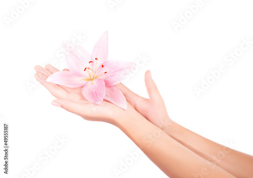 Women's arm holding pink lily flower