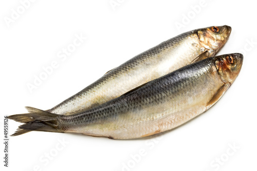 Salted herring  isolated on white