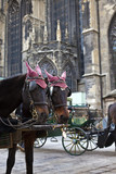 Horse Carriage in Vienna