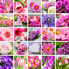 Garten - Blumen und Dekoration