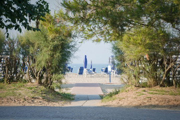Beach facilities beyond the hedge