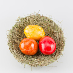 Easter eggs in birds nest