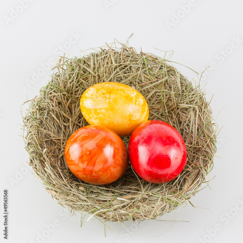 Easter eggs in birds nest