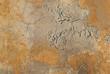 Muro vecchio grezzo, trama