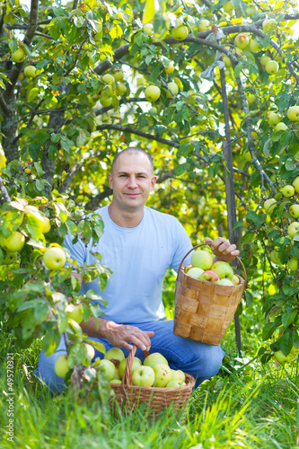 man with basket of harvested apples